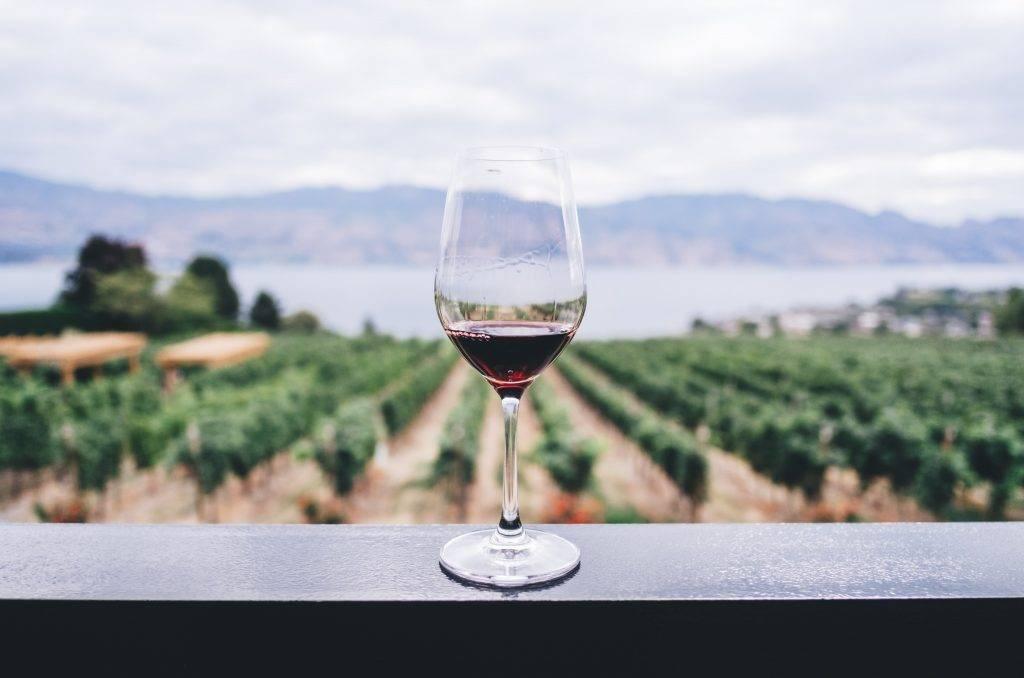Konzumácia alkoholu môže zhoršiť príznaky alergikom aj astmatikom. Nie všetky alkoholické nápoje pôsobia rovnako a nie u každého jedinca je spúšťacia látka rovnaká. Ak sa alkoholu nechcete úplne vzdať, musíte si odsledovať, ktorá z nich je nevhodná práve pre vás.